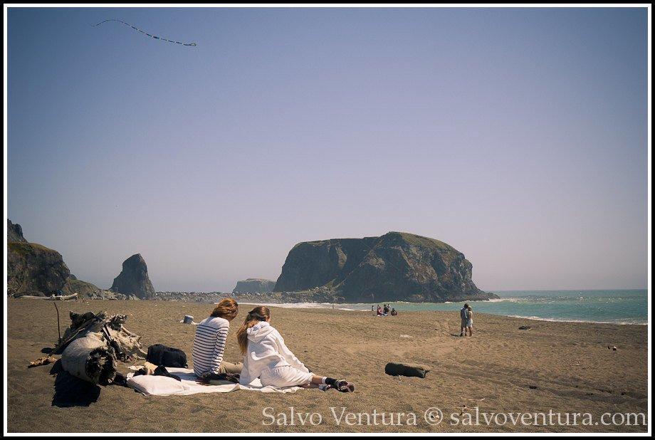 Picnic on Goat Rock Beach