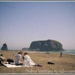 goat_rock_beach_7761