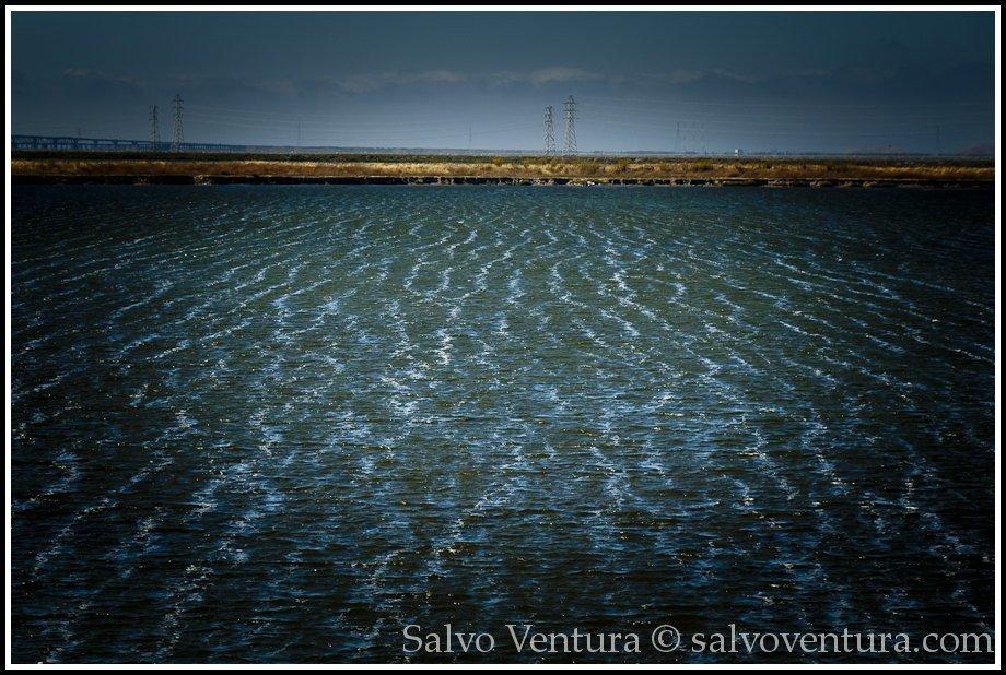Water marks - Shoreline Park, Mountain View