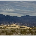blogexport_2011-12-28-death-valley_dsc_0139