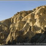 blogexport_2011-12-28-death-valley_dsc_0376