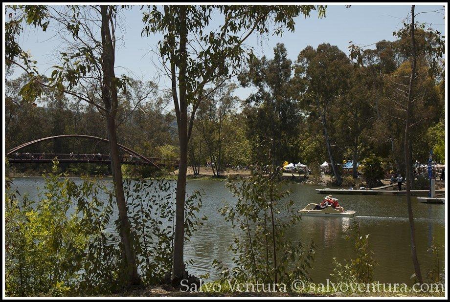 Beautiful day in Vason Park, Los Gatos