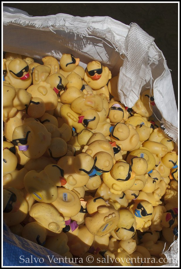 Rubber ducks ready to go