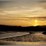 blogexport_salvo-ventura_2012-04-15-palo-alto-baylands_dsc_2263