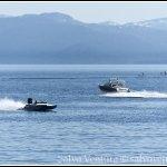 blogexport_salvo-ventura_2012-06-13-lake-tahoe_dsc_3241