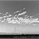 blogexport_salvo-ventura_2012-07-22-palo-alto-baylands_dsc_3393
