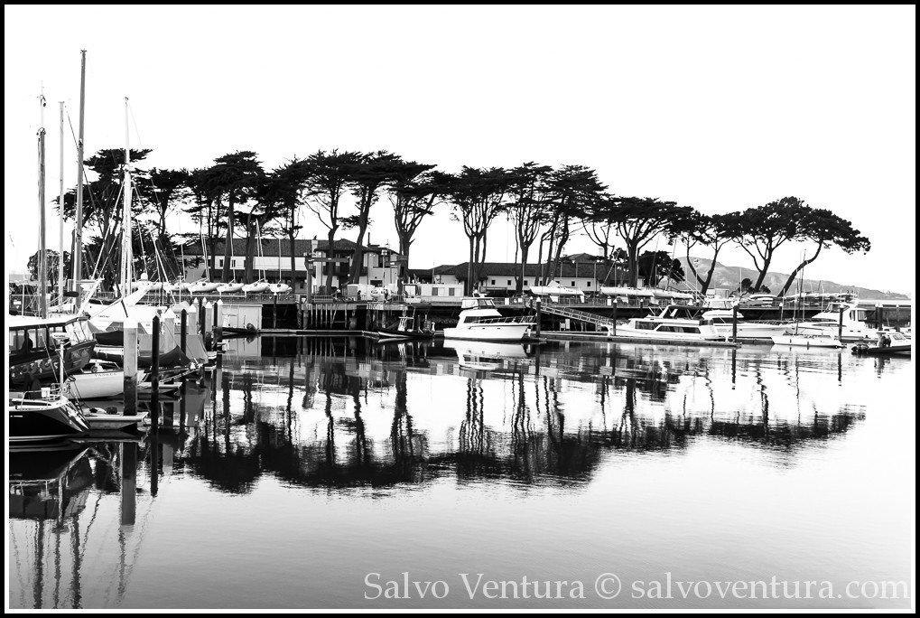 Reflections at the SF Marina