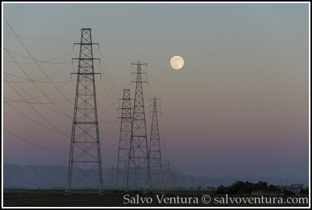 blogexport_salvo-ventura_2013-06-22-full-moon-at-baylands__dsc1356
