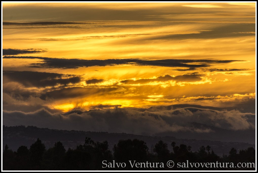 blogexport_salvo-ventura_2013-08-24-palo-alto-baylands__dsc1726