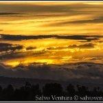 2013.08.24 Palo Alto Baylands