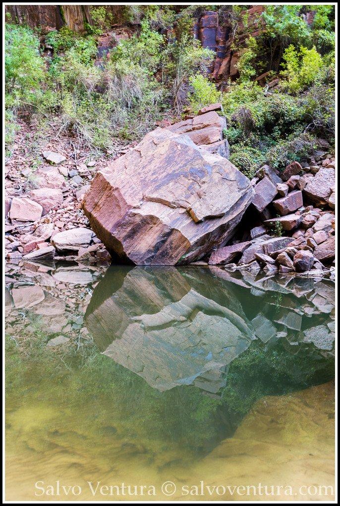blogexport_salvo-ventura_2013-09-29-zion-national-park__dsc2322