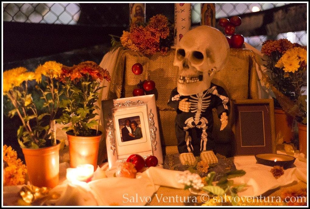 blogexport_salvo-ventura_2013-11-02-sf-dia-de-los-muertos__dsc3046
