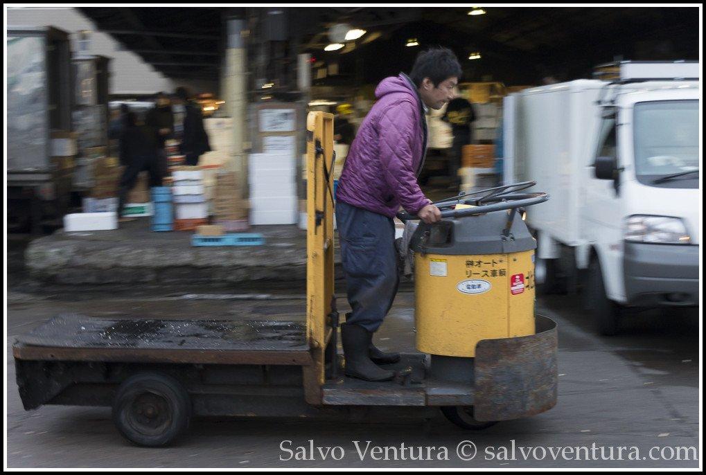 blogexport_salvo-ventura_2013-11-14-tokyo-tsukiji-fish-market__dsc3174