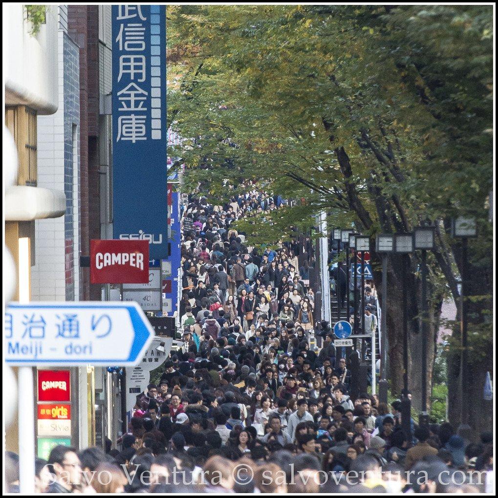 blogexport_salvo-ventura_2013-11-15-tokyo-with-akiko-and-kumi__dsc3291