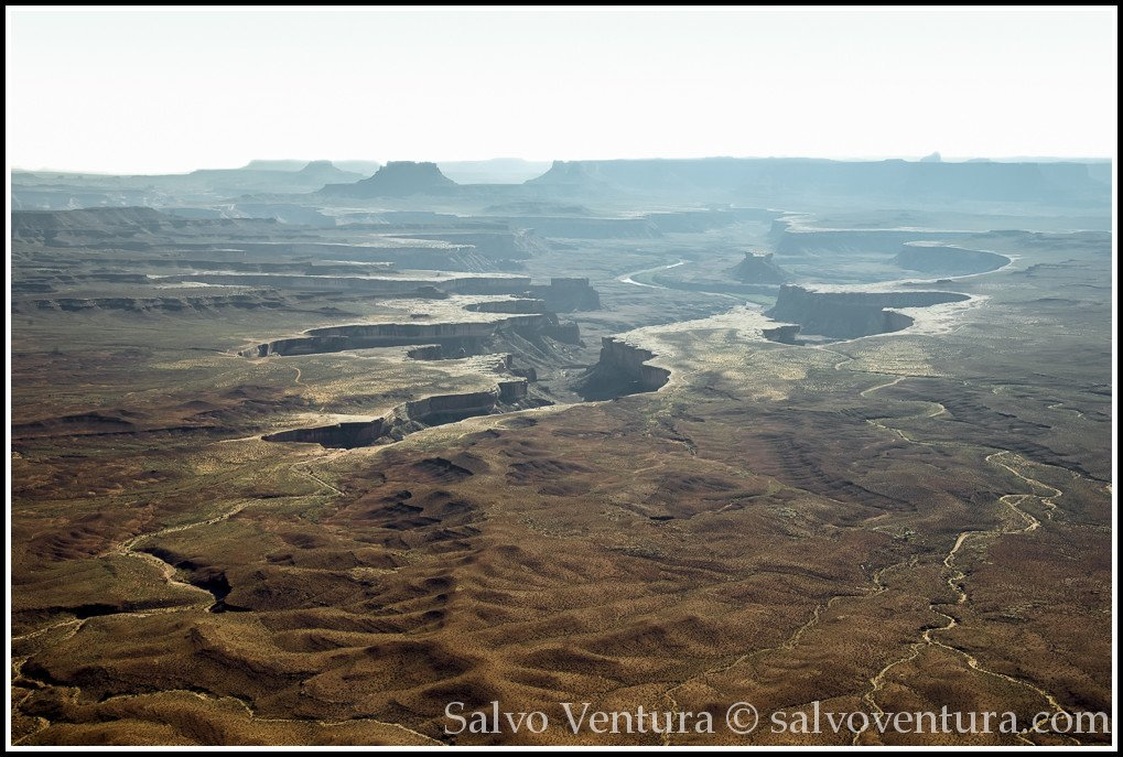Salvo Ventura - Canyonlands, Moab, UT - Grand View Point Overlook