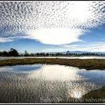 2014.12.27 Palo Alto Baylands_Panorama-02_salvoventura.com