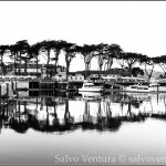 salvoventura.com-reflections-san-francisco-california