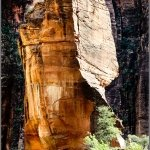 salvoventura.com-the-challenge-zion-national-park-utah