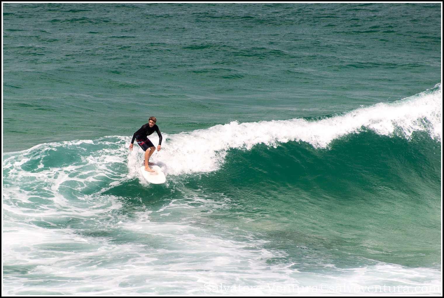 2016.03.05 Sydney Bondi to Coogee coastal hike-salvoventura-blog-DSC_6832