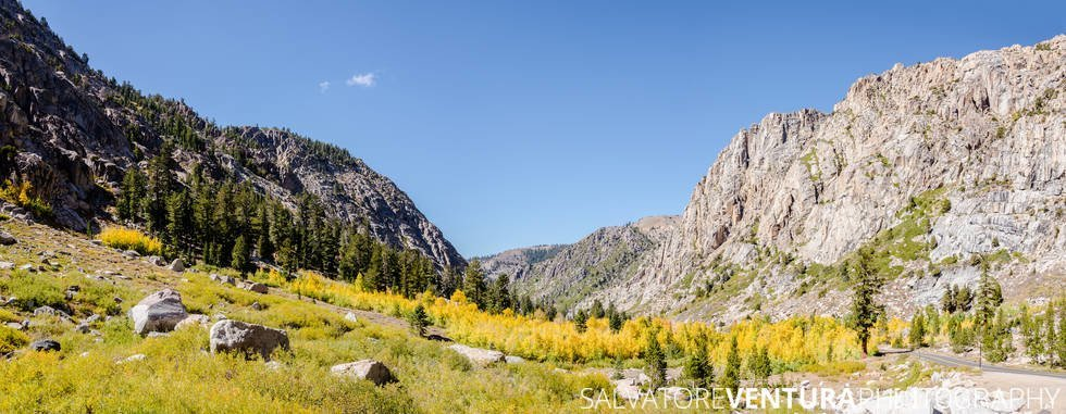 salvoventura_mono_county_fall_colors_DSC_3539-pano