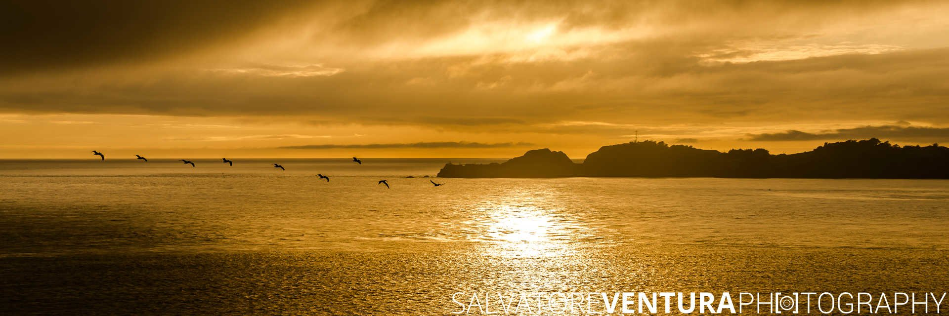 Point Bonita Lighthouse at Golden Sunset with pelicans - Salvatore Ventura Ph[o]tography