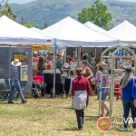 More artists at the 42nd Berryessa Art Festival - Advantage-Photography.com