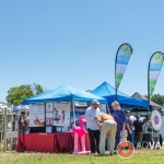 Local businesses at the 42nd Berryessa Art Festival - Advantage-Photography.com