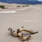 salvoventura-death-valley-national-park-2019-featured-10