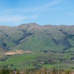 Green Milpitas Hills