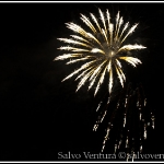 4th_july_fireworks_shoreline_mountain_view_7860