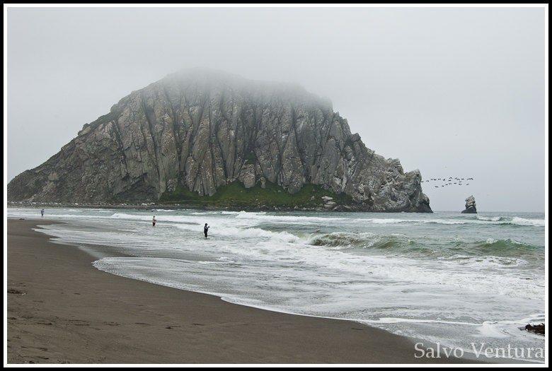 Morro Bay 1